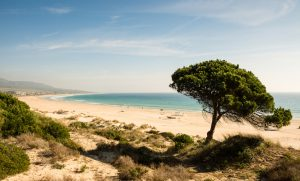 Bolonia beach on the Atlantic Costa de la Luz, perfect of rite surfing